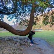 Glendalough Walks in Ireland, Wicklow County