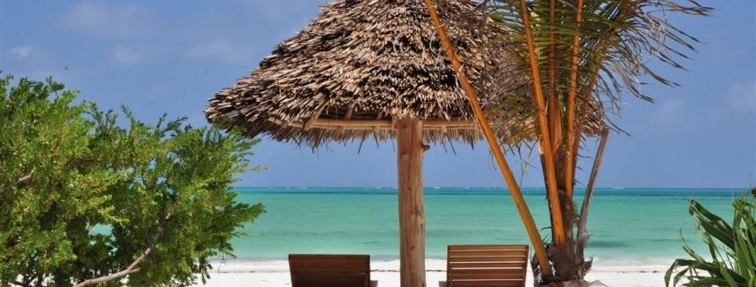 Trip vs Vacation: Visit Zanzibar Beaches