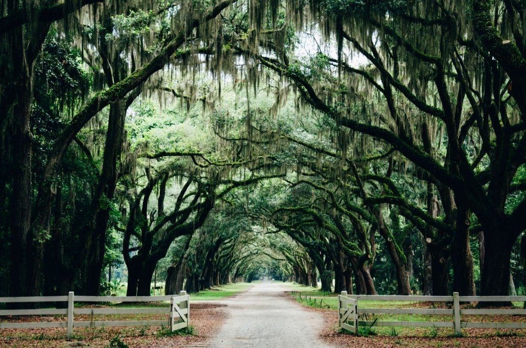 Free Things to Do in Savannah on a budget.