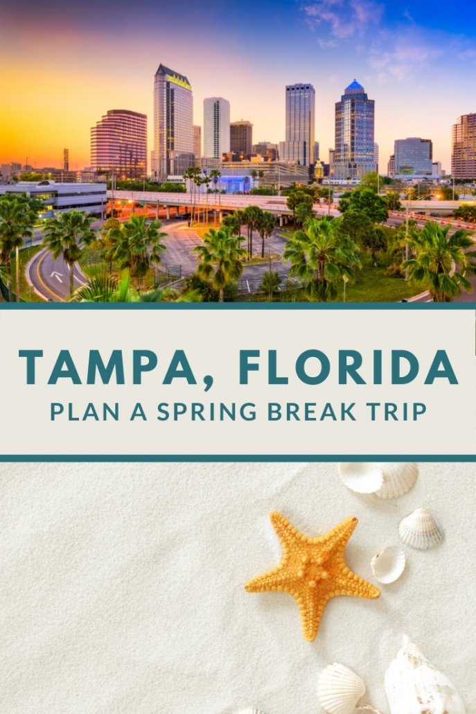 Why you should Spring Break in Tampa Bay.